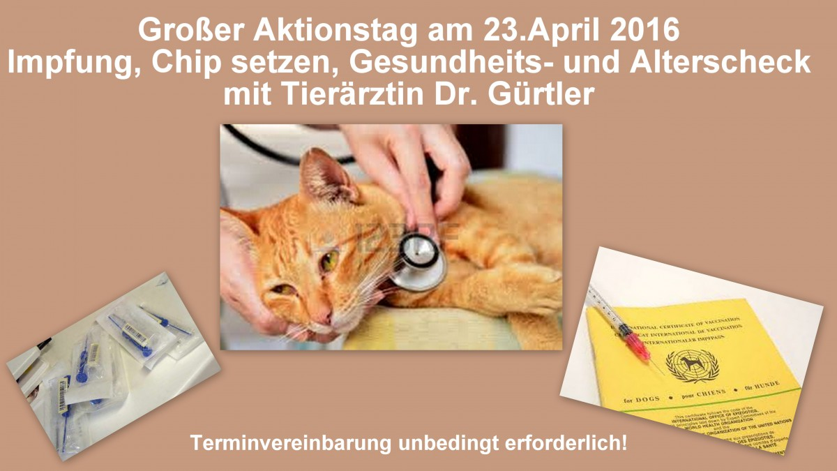 Tierärztlicher Aktionstag Am 23. April 2016